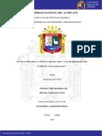 proyeto cushuro.pdf