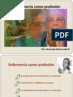 enfermeracomoprofesin-120205214232-phpapp02.pdf