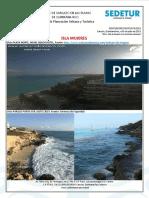 DPUyT 474_ReporteSargazo 09-07-2019