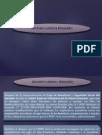 regimenlaboralpesquero-141002115503-phpapp01.pptx
