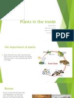Plants in the Inside