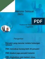 IMS_final