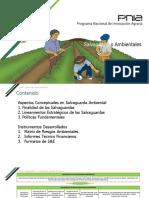 Salvaguardas Ambientales.pptx