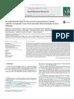 An Experimental Study on the Vertical Transmission of Caprine Arthritis-Encephalitis Virus