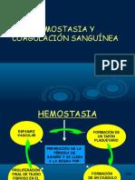 Diapos de Hemostacia