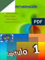 lacontaminacin2-120820162039-phpapp01.pdf
