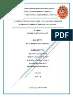 PROYECTO-LA-CALZADA.docx