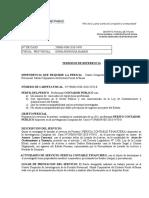 Modelo de Terminios de Referencia (Tdr)-2019