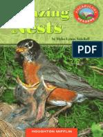 Amazing Nests.pdf