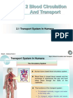 Chapter 2 - Transport System in Humans