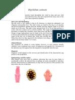 49560 Dipylidium Caninum Notes