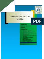 curriculun-nacional.docx