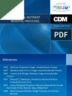 BNR Processes.pdf