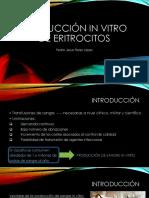 Producción in Vitro de Eritrocitos_Pedro Jesús Flores López