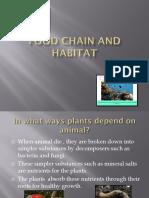 Food Chain and Habitat