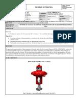 INFORME_VALVULA ECF_LemaNelson.pdf