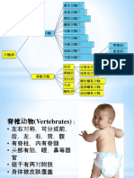 10 BIO vertebrate.pptx