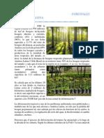 RECURSOS FORESTALES.docx