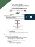 What is Hemostasis.docx