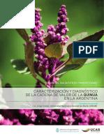 Caracterizacion y Diagnostico de la cadena de valor de la quinoa en Argentina.pdf
