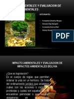 Ficha Ambiental 2234 brayan loca