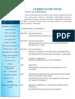 Curriculum Vitae YDVN