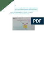 Pr Ctica Final Fis211 - Copy