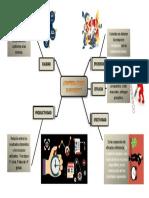 Mapa mental eficiencia, eficacia y efectividad