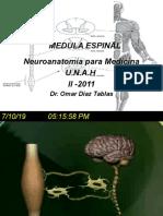 1. MEDULA ESPINAL.pptx