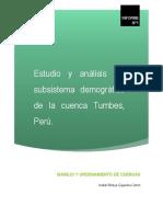 subsistema demografico cuenca tumbes