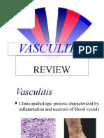 Vasculitis Review
