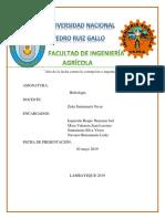 HIDROLOGÍA OFICIAL.docx