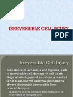 IRREVERSIBLE CELLS INJURY