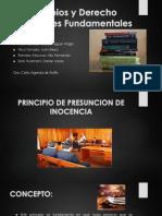 PRINCIPIOS PROCESALES FUNDAMENTALES
