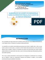 TESIS_PREVIA_SHAMPOO_DE_MANZANILLA.pptx