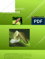 biologia exposicion