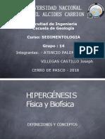 Hipergenesis Fisica y Biofisica