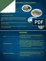 Ventajas y Desventajas de Cajas Ecologicas