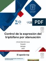 Control de La Expresion Del Triptofano