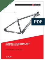 Ignite carbón 29