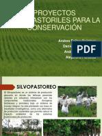 Proyectos Silvopastoriles Para La Conservacion