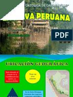 Laselvaperuanalupecatolicacollege 110926204110 Phpapp02 Convertido