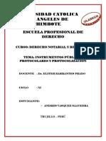 Los Instrumentos Publicos Protocolares y Protocolización