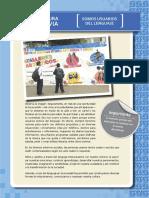 lectura_previa.compressed.pdf