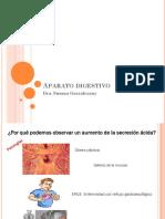 Aparato digestivo-2018