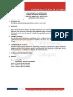 infomre_visita_tecnica.docx