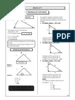 triangulos-notables-170122150641.pdf