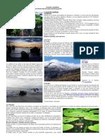 Geografía Colombiana Octavo