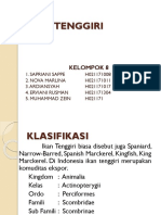 7260_IKAN TENGGIRI