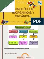 Biomoléculas inorgánicas y orgánicas